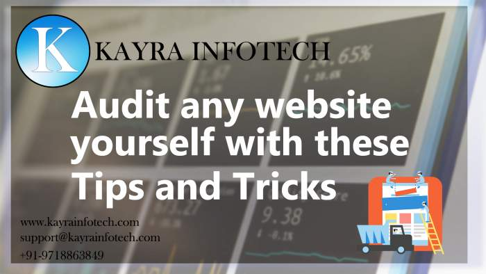 How to audit your website by kayra infotech